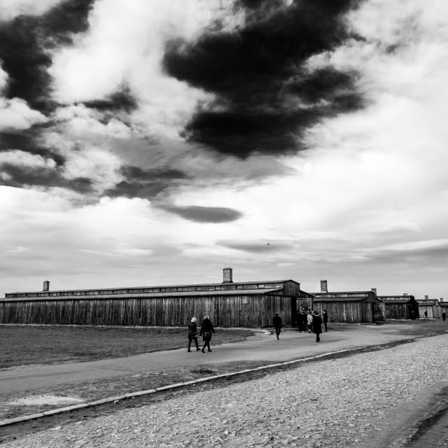"""""""Auschwitz - Birkenau (Auschwitz 2) Death Camp general view"""" stock image"""
