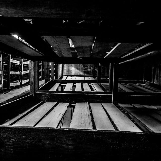 """""""Auschwitz - Birkenau (Auschwitz 2) Death Camp barracks"""" stock image"""