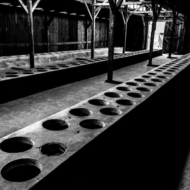 """""""Auschwitz - Birkenau (Auschwitz 2) Death Camp toilets"""" stock image"""
