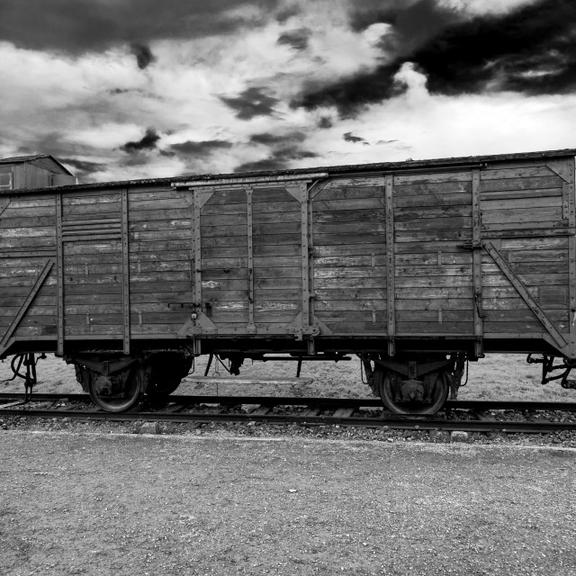 """""""Auschwitz - Birkenau (Auschwitz 2) Death Camp Cattle Wagon"""" stock image"""