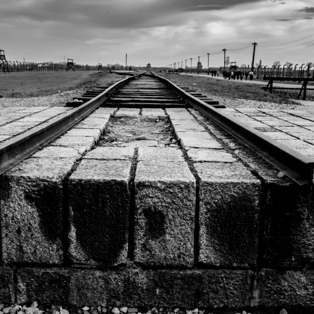 """""""Auschwitz - Birkenau (Auschwitz 2) Death Camp End of the Line"""" stock image"""