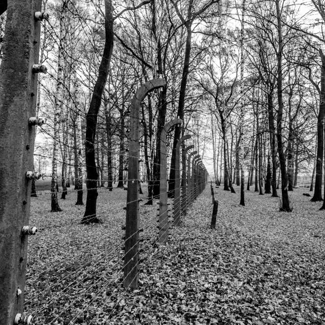 """Auschwitz - Birkenau (Auschwitz 2) Death Camp Electric Fence"" stock image"