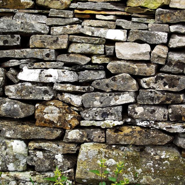 """Yorkshire Drystone Wall"" stock image"
