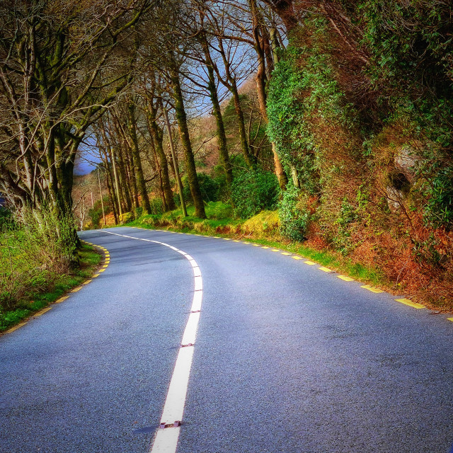 """""""Road less travelled"""" stock image"""
