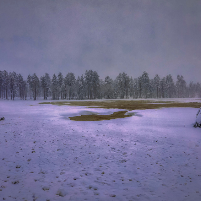 """mogollon rim-rim-snow-sunrise-arizona"" stock image"