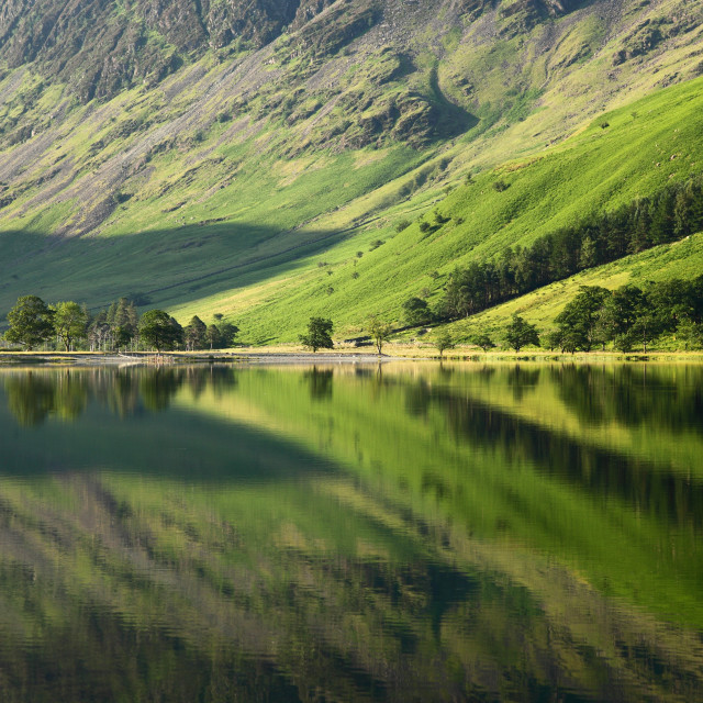 """""""Buttermere Greens"""" stock image"""