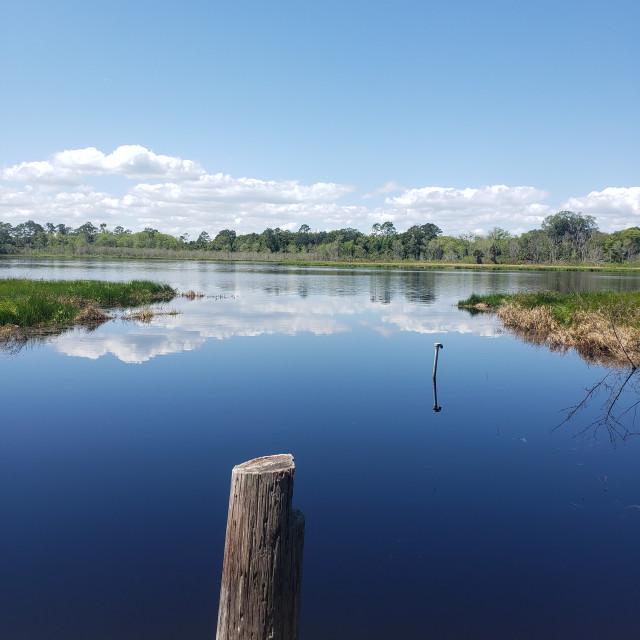 """""""Reflections at Shaw Lake"""" stock image"""