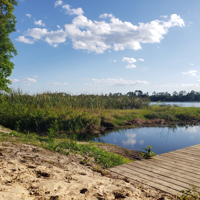 """Shaw Lake sunny afternoon"" stock image"