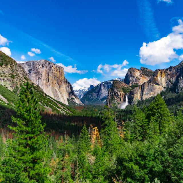 """Yosemite Valley in Yosemite National Park with El Capitan, Half Dome and Yosemite Falls"" stock image"