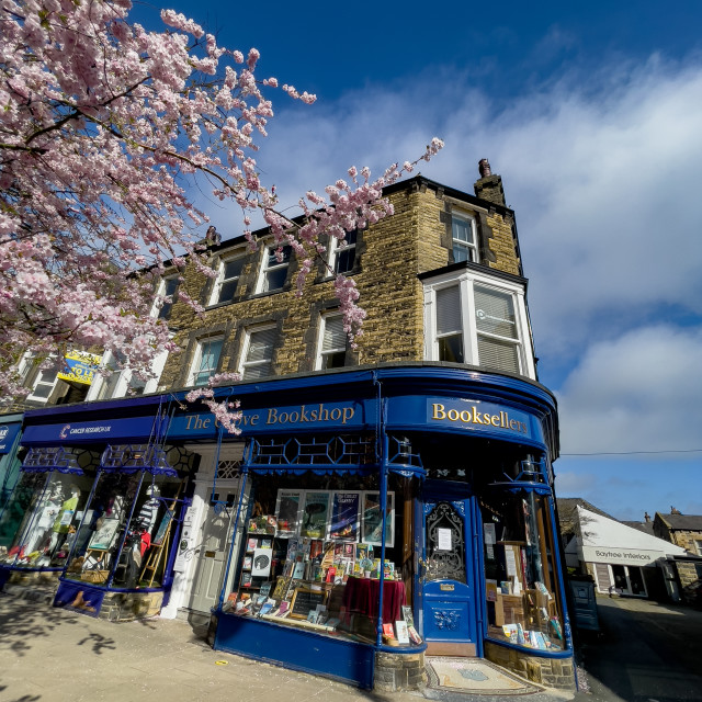 """The Grove Bookshop and Cherry Blossom in Spring, Ilkley,"" stock image"