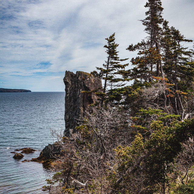 """""""Along the Skerwink Trail"""" stock image"""