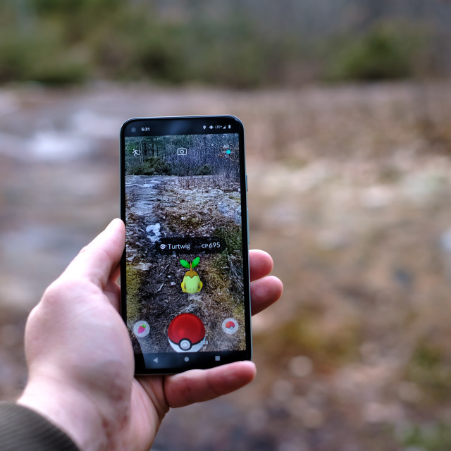 """""""Playing Pokemon Go on a nature trail"""" stock image"""