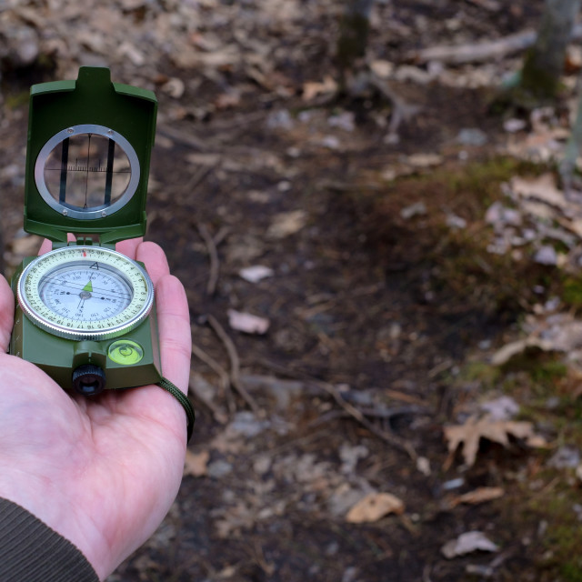 """""""Point-of-view prismatic compass in the woods"""" stock image"""