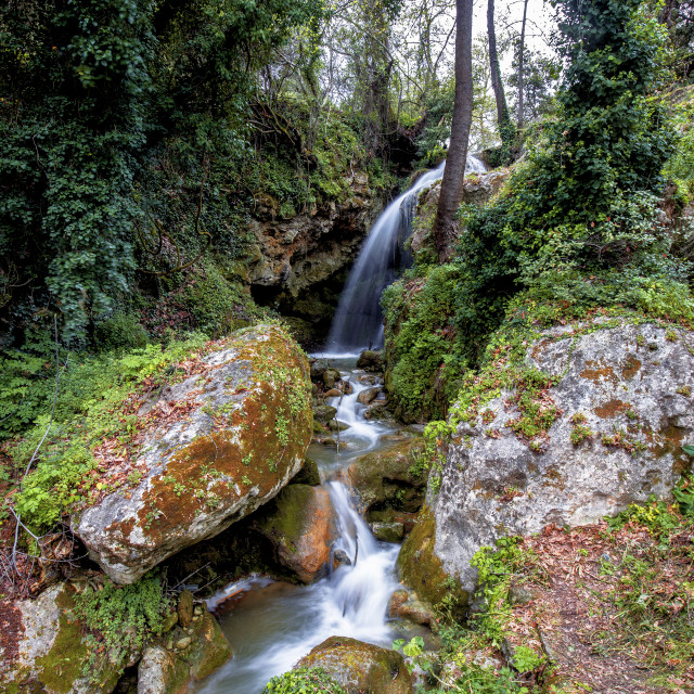 """""""Waterfall in a Forest"""" stock image"""