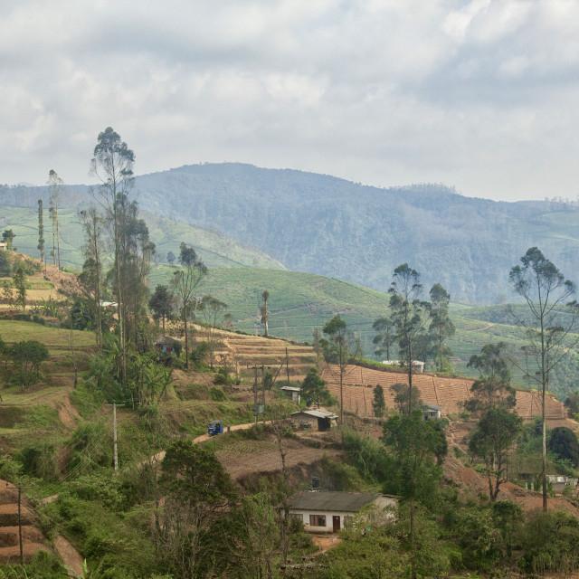"""Villages in the Highlands of Sri Lanka"" stock image"
