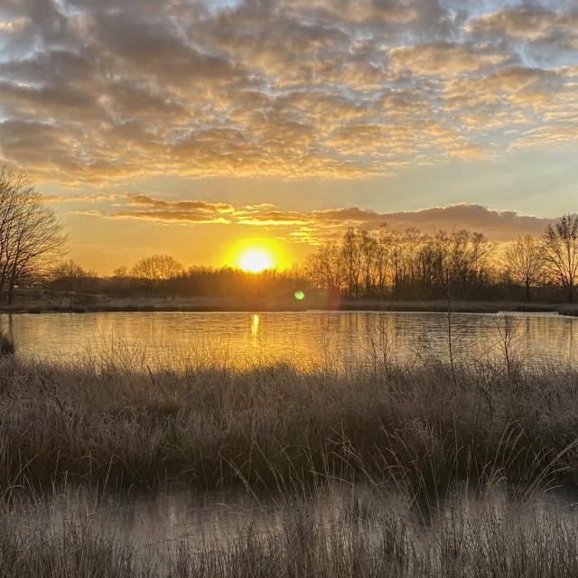 """Sunrise in winter landscape"" stock image"