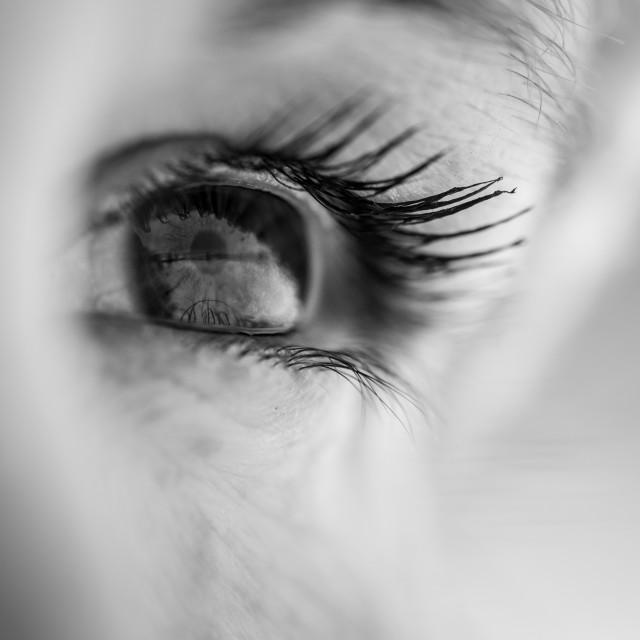 """""""Eye Macro"""" stock image"""