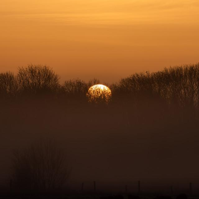 """""""Misty Sun"""" stock image"""