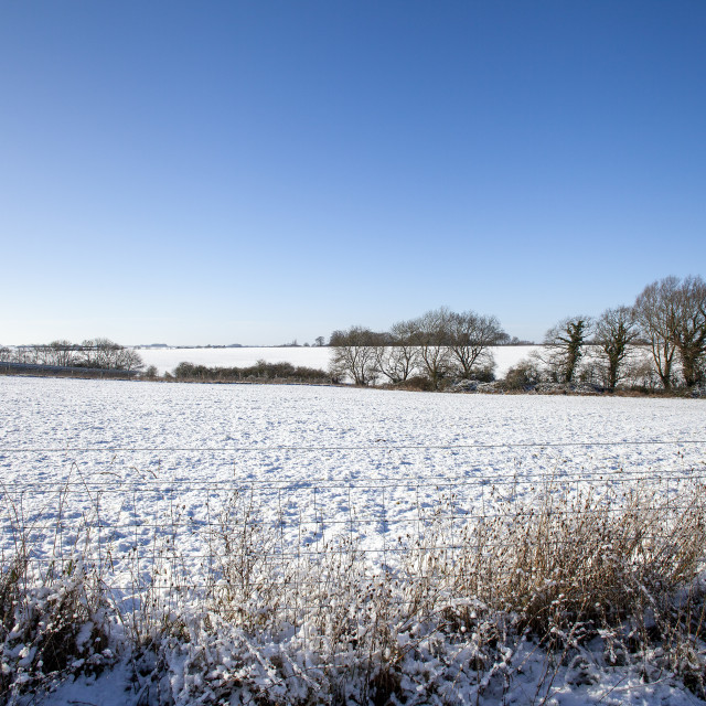"""""""Snow and blue sky"""" stock image"""