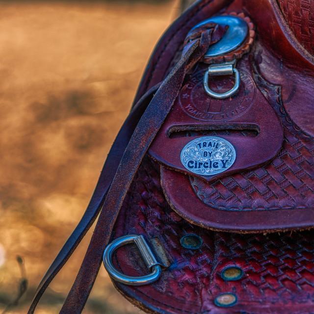 """""""western-saddle-horse-texas-rodeo"""" stock image"""