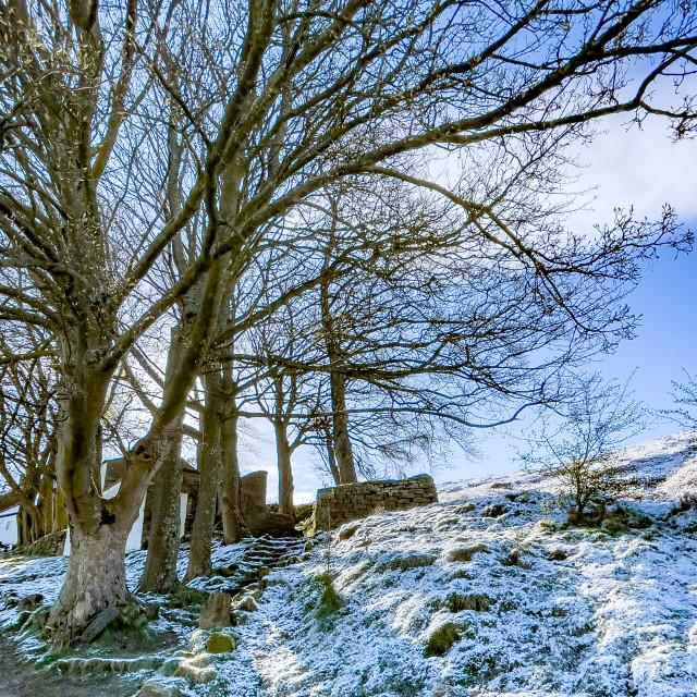 """White Wells, Rombalds Moor, Ilkley, Yorkshire."" stock image"