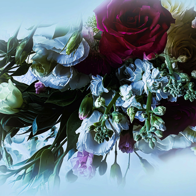 """""""A Beautiful Collection of Flowers"""" stock image"""