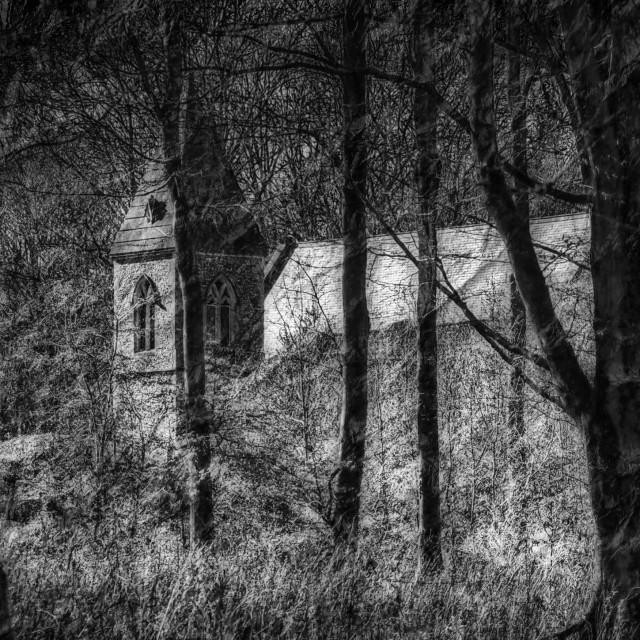 """St Katherines Church - Savernake Forest, Wiltshire, England"" stock image"