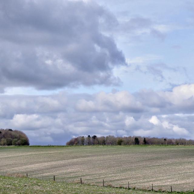 """""""Landscape - Salisbury Plain, Wiltshire, England"""" stock image"""