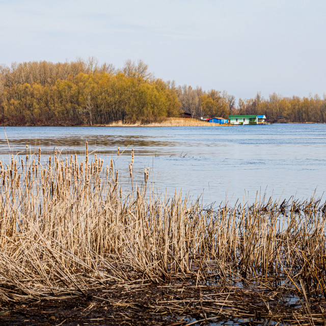 """""""View of the Dnieper river in Kiev, Ukraine, at the end of winter"""" stock image"""