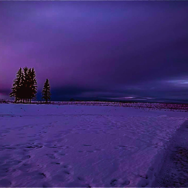 """""""Purple Sunset In The Countryside"""" stock image"""