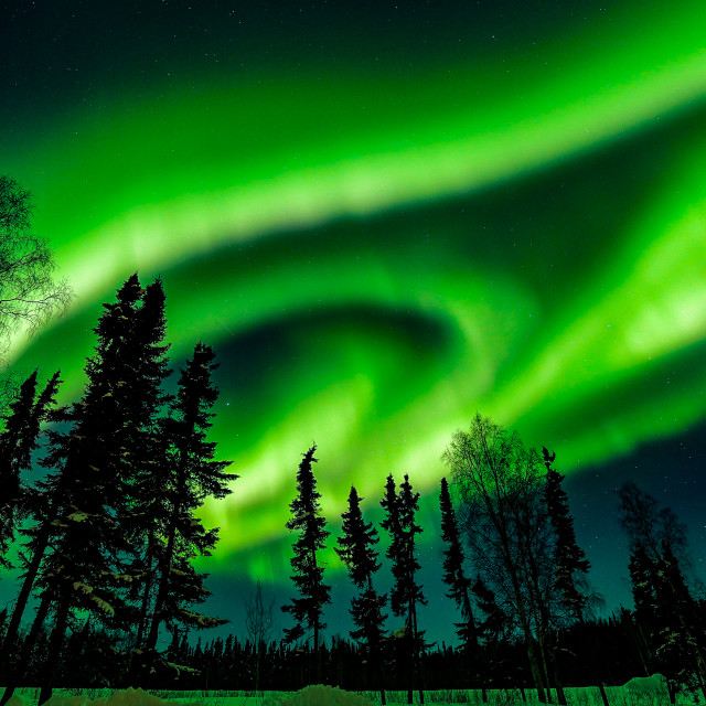 """""""Northern Lights In White Mountains of Alaska"""" stock image"""