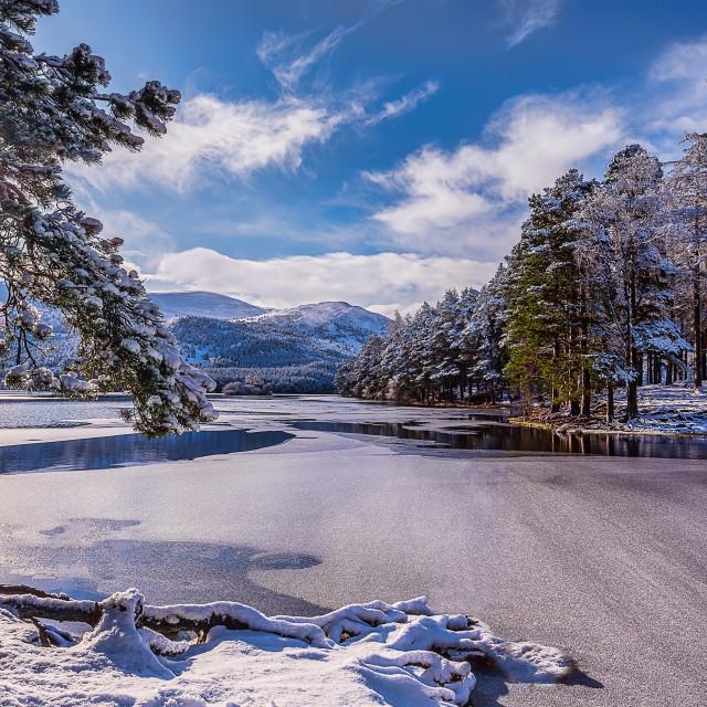"""""""Winter on Loch an Eilein"""" stock image"""