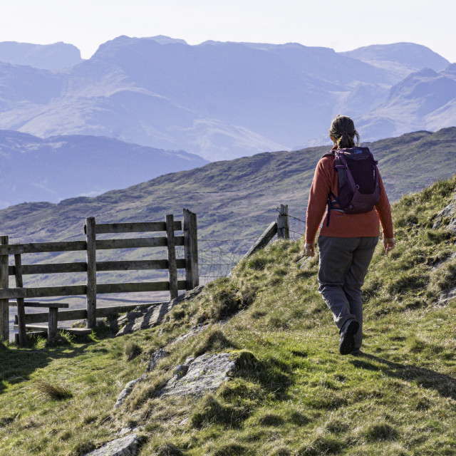 """""""Walker in the Lake District"""" stock image"""
