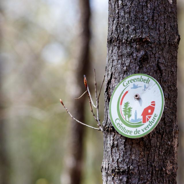 """NCC Greenbelt trail marker sign in Ottawa"" stock image"