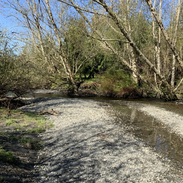 """""""River at Sedro-Wooley #2"""" stock image"""