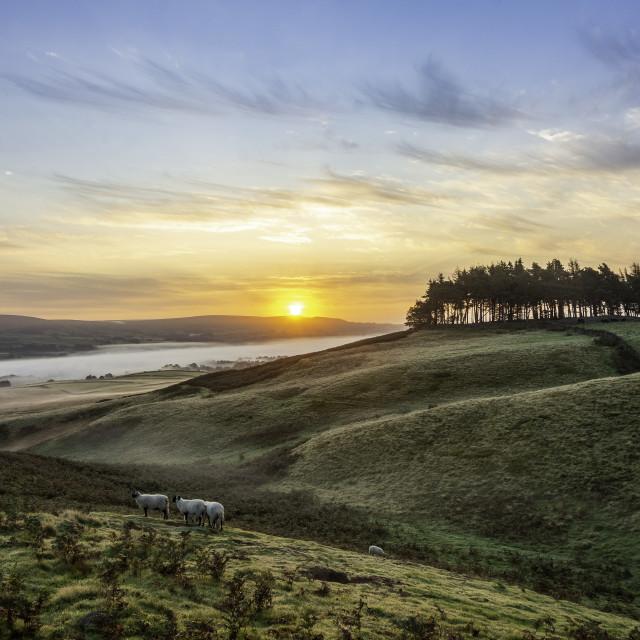 """Kirkcarrion sunrise, Teesdale"" stock image"