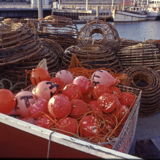 """""""Lobster pots & floats"""" stock image"""