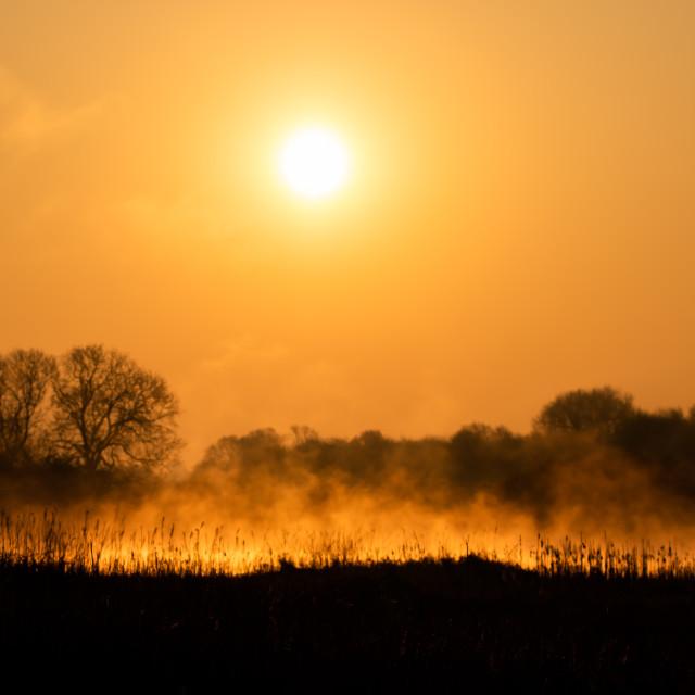 """Sunrise over Staveley Lagoon"" stock image"