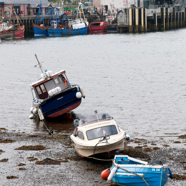 """""""Fishing boats on the coast on the fishing marina of Oban town in the highlands of Scotland"""" stock image"""