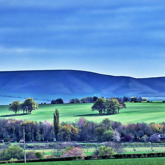"""Pewsey Hills - Wiltshire, England"" stock image"