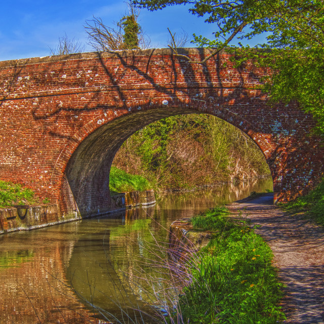 """""""Pains Bridge (No. 113) - Kennet & Avon Canal, Pewsey, Wiltshire, England"""" stock image"""