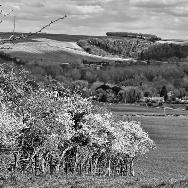"""View Towards Sherrington Village - Wiltshire, England"" stock image"