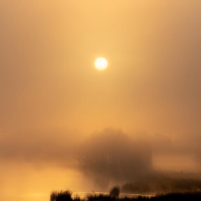 """""""Misty Sunrise"""" stock image"""