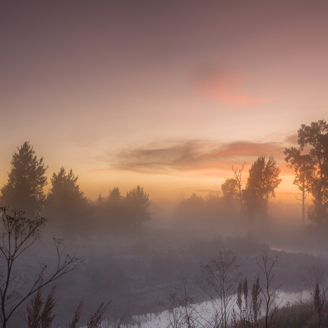 """Dawn in Dunkeld"" stock image"