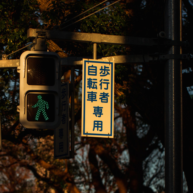"""Japanese Street Crossing Lights at Sunset"" stock image"