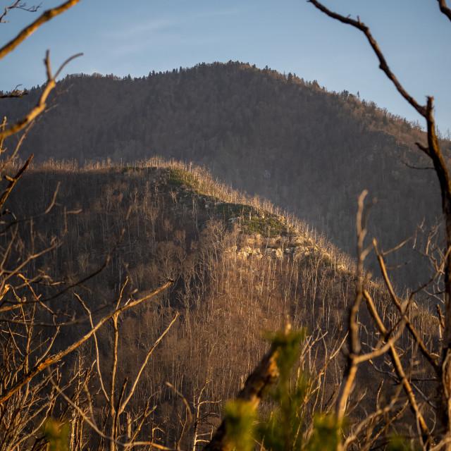 """sunset illuminating a mountain peak from baskins creek trail"" stock image"