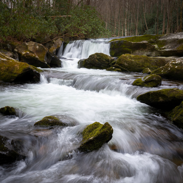 """""""lynn prong cascades with mossy rocks in the spring"""" stock image"""