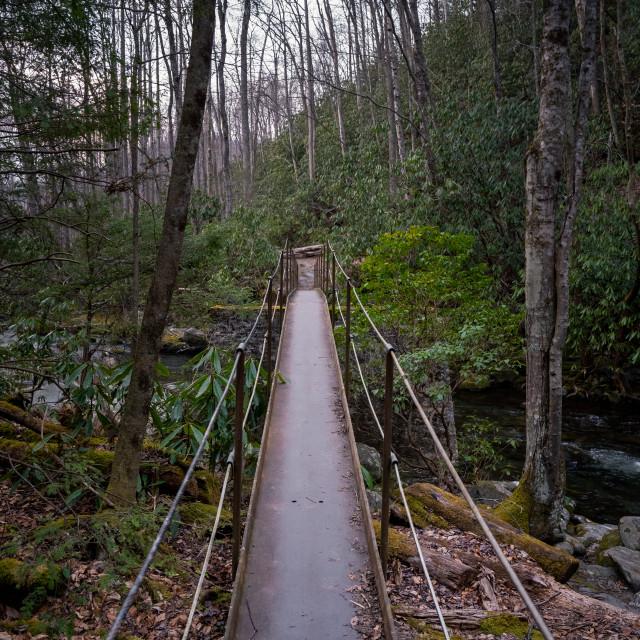 """old metal bridge over thunderhead prong"" stock image"
