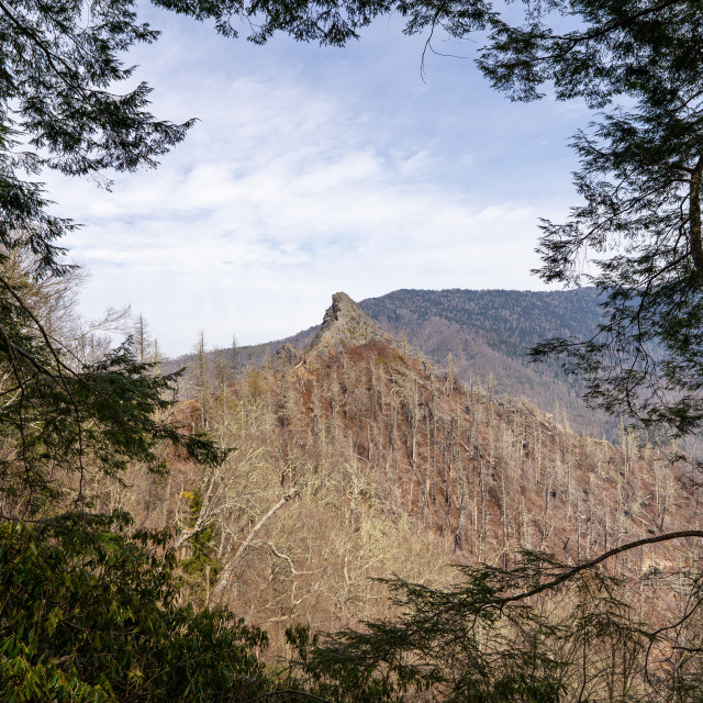 """""""chimney tops from the mountain top look out framed by trees"""" stock image"""