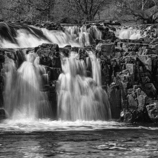 """""""Low Force in black and white"""" stock image"""
